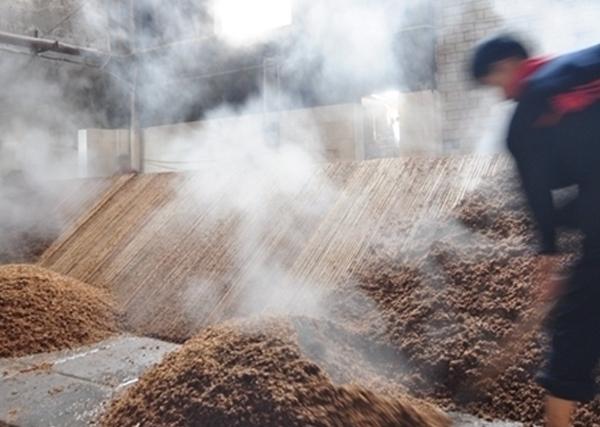 泸窖酿酒工艺